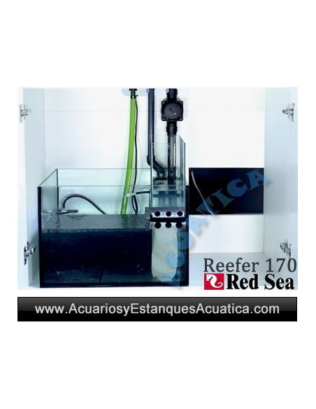 ACUARIOS MARINOS RED SEA REEFER